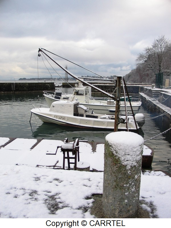 winter on the harbor