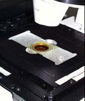 Microscopes inversés avec systèmes d'acquisition d'images suite