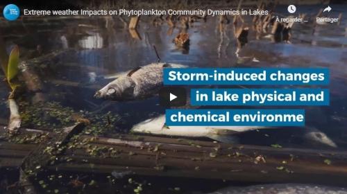 Une video suite à l'article paru dans Global Change Ecology (GCB)