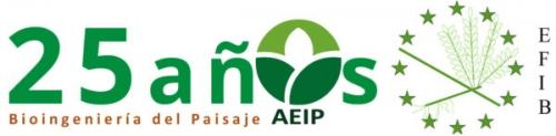 LogoOrg.Webinar_AEIP