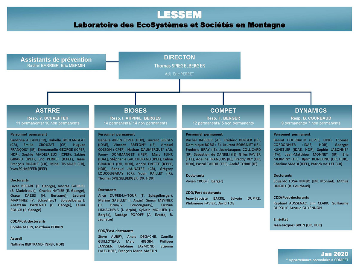 Organigramme LESSEM Janvier 2020
