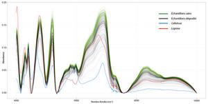 Spectres proche infrarouge d'échantillons de sapin, cellulose et lignine © Barré Jean-Baptiste / INRAE