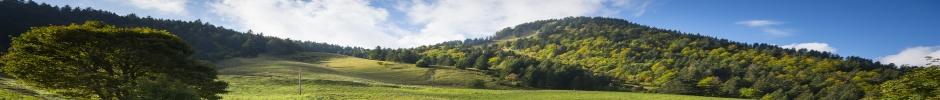 paysage bandeau site LESSEM