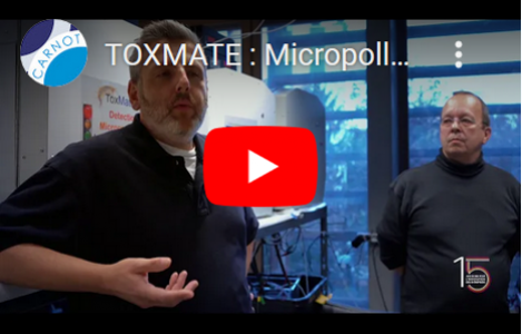 Toxmate Carnot