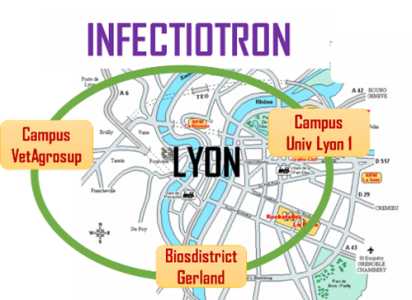 InfectioTron project